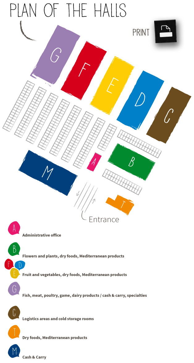 plan-of-halls-print