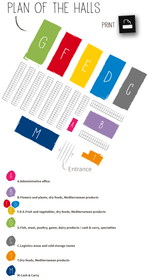 Print plan of the halls
